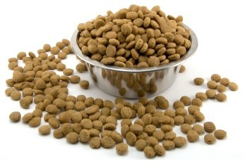 natural dog food supplements